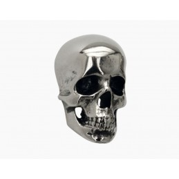 vis decorative skull inox
